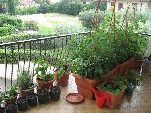 Ecco come creare un vero e proprio orto sul balcone!